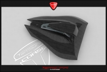 B4 Single seat tail in carbon fiber complete of plug (with Transparent Avio)