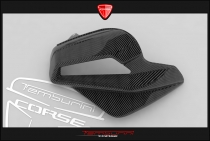 B4 Left panel for airbox in carbon fiber (in natural state)